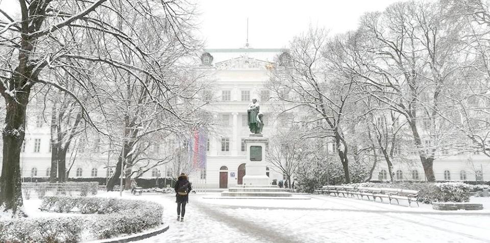 Viyana Teknik Üniversitesi